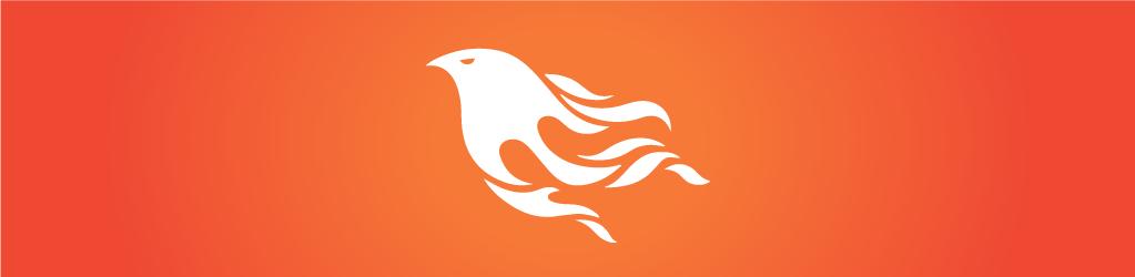 Phoenix Framework Overview